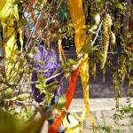 Maibaum aufstellen 2013