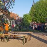 maibaum-2019-wernikow(9)